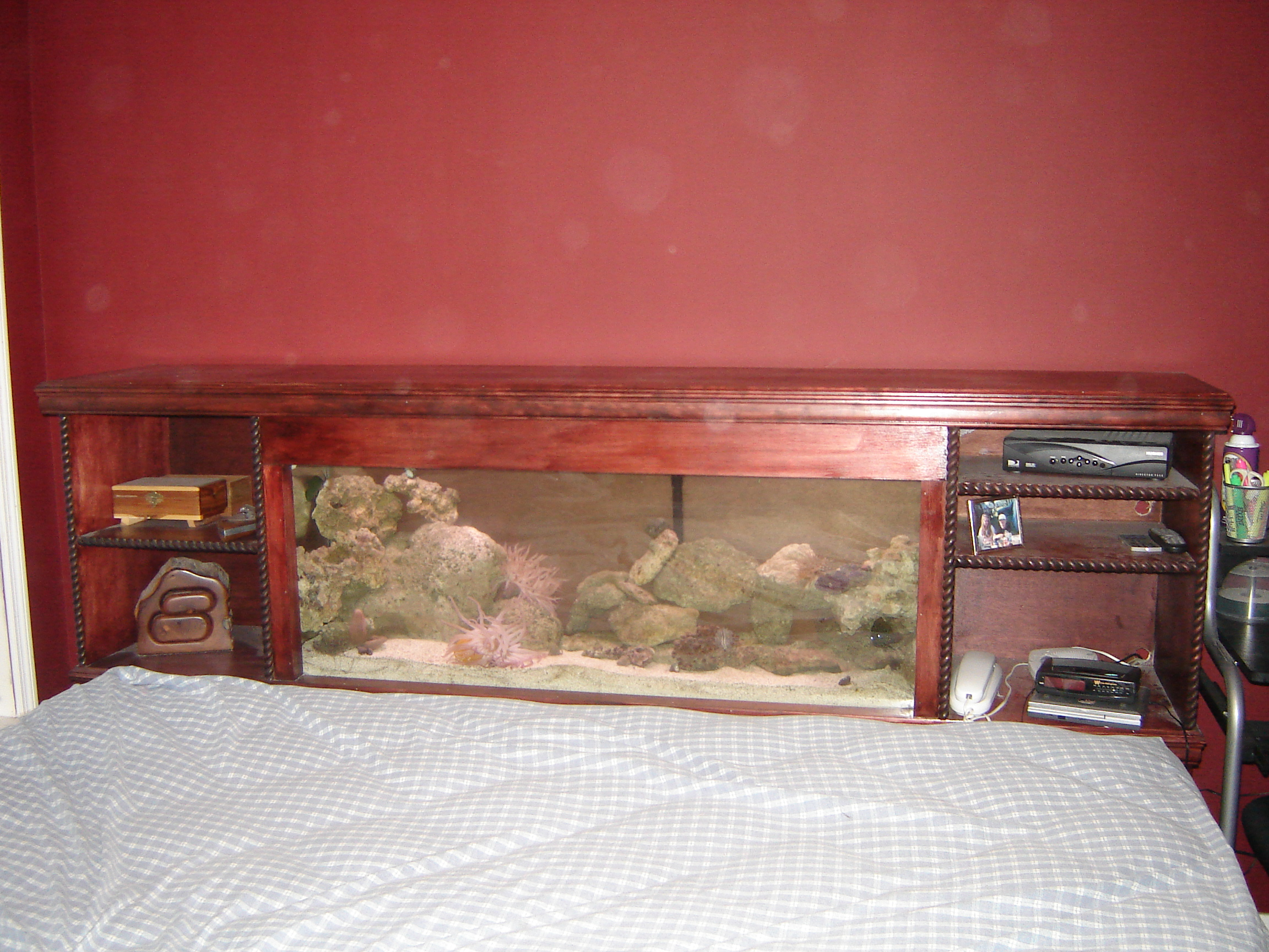 Fish aquarium bed frame - Hang On Wall Fish Tanks